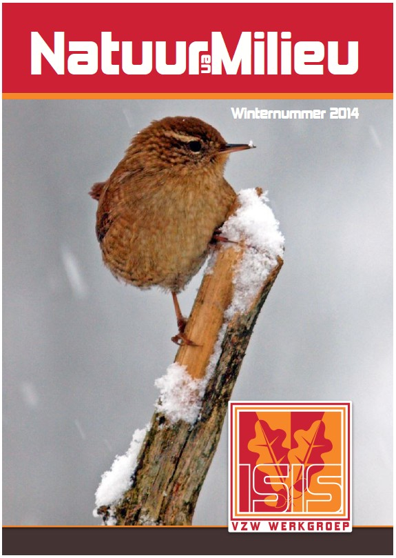 voorblad winter